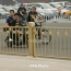ՀՀ-Չինաստան ուղիղ չվերթներ կարող են իրականացվել