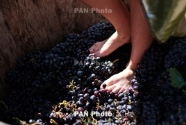 Վայոց ձորի Խաչիկում շամպայն գինիների գործարան կհիմնադրվի