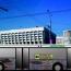Строки Сильвы Капутикян украсят «Литературный автобус» во Владимире