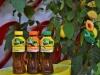 Coca-Cola launches Fuzetea in Armenia