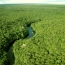 Հետազոտություն.  Մինչև 2080-ը բույսերի և կենդանիների տեսակների 50%-ը կարող է անհետանալ