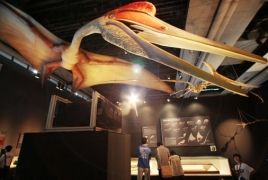 Giant pterodactyl with a wingspan similar to F-16 fighter discovered