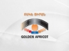 Armenia opens GAIFF Pro film development tool to Azerbaijan too