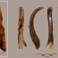 90,000-year-old wooden tools made by Neanderthals unearthed in Spain