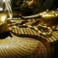 Archaeologists may have discovered tomb of King Tut's wife