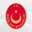 Թուրքիան «գոհ» է Արևմուտքի ավիահարվածներից  Սիրիայում