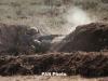 Defence army: Azerbaijan intensively violates ceasefire