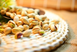 Iranian company starting pistachio orchards in Armenia