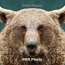 Глава СНБ Армении призвал экологов заняться животными из зоопарка Манвела Григоряна