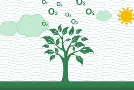 Համայնքներում շարունակվում է կանաչ ենթակառուցվածքների ստեղծման ծրագիրը
