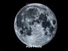NASA confirms presence of water ice at moon's poles