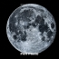 NASA confirms presence of water ice at moon's poles