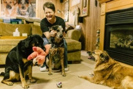 New therapy could reverse Type 1 diabetes in humans and dogs