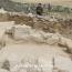 В Израиле нашли следы сваренного более 13,000 лет назад древнейшего пива