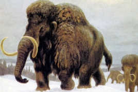 Russian scientists plan to bring woolly mammoths back