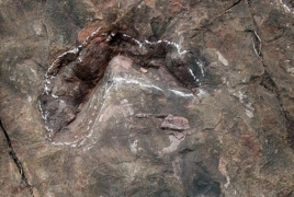 Scientists could have discovered Jurassic period's biggest dinosaur