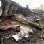 Нидерланды обвинили спецслужбы РФ в попытке украсть информацию о крушении «Боинга» над Донбассом