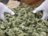 Canada starts legal marijuana sales