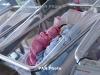 В 2018 году в Арцахе родились 2204 ребенка