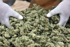 На Украине предложили легализовать марихуану в медицинских целях