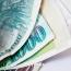 «Զորեղ ապագա»  ՀԿ-ի ղեկավարը բարեգործության պատրվակով մոտ 28 մլն դրամ և 1․5 մլն դրամի շինապրանք է յուրացրել