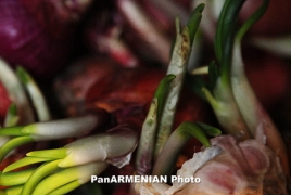 Onions, garlic could protect against cancer: study