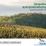 «Օրգանական գյուղատնտեսության զարգացման» 2019-2020-ի անվճար ծրագիրը  մեկնարկել է