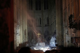 Bees living on Notre-Dame cathedral roof survive fire