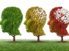 Synthetic peptide may help treat Alzheimer's disease