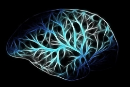 Sense of touch formed in human brain before birth