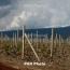 ՀՀ-ում գյուղապահովագրության համակարգ են ներդնում
