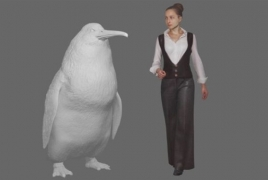 Human-sized penguin used to live in New Zealand, new find suggests