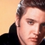 Elvis Presley spy animated series coming to Netflix