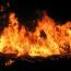 Ծիծեռնակաբերդում 100 ծառ է այրվել. Պատճառը կարող է հրավառությունը լինել