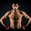 Gegard Mousasi vows to retire if he loses to Rafael Lovato Jr
