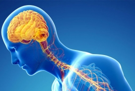 Parkinson's disease is also present in the blood