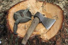 Լոռիում ապօրինի անտառհատման համար 2019-ին 41.6%-ով ավելի մարդ է դատապարտվել