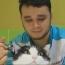 В РФ ветеринар-армянин спасал домашних животных от эвтаназии: На него пожаловалась зоозащитница