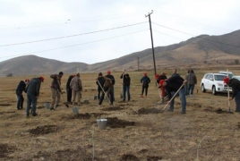 Vivacell-MTS helps plant wild trees in Armenian village