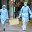 Новый китайский коронавирус - гибрид вирусов змеи и летучей мыши