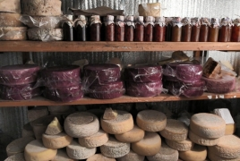 «Հարբած» պանիրներ՝ Գավառից. Նոր ճյուղ՝ հայկական բիզնեսում (Վիդեո)