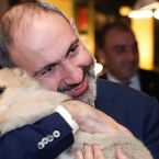 Armenian PM's family welcomes fifth dog, a present from Georgia