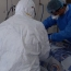 Armenia confirms 482 coronavirus cases overall