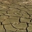 Помимо коронавируса: В 2020 году обещают пожары, потоп, неурожай и голод
