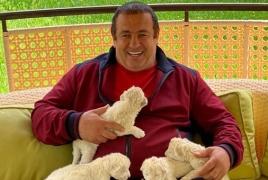 Ծառուկյանը Կենդանաբանական այգուն կնվիրի իր մեծացրած առյուծին