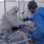 Минздрав Армении: 271 пациент с Covid-19 - в тяжелом состоянии, 53 - в критическом