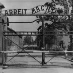 Освенцим открылся для посетителей