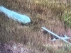 Lawmaker: Armenia has downed several Azerbaijani drones