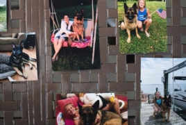 First dog to test positive for Covid-19 in U.S. has died