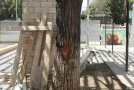 Մաշտոցի պուրակում  սրճարանի սեփականատերը  հատված 4 ծառի փոխարեն  խոստացել է 9 տնկել